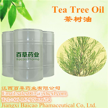 茶树精油 互叶千层油 Tea tree oil
