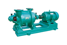 (SZ-2) 液(水)环式真空泵