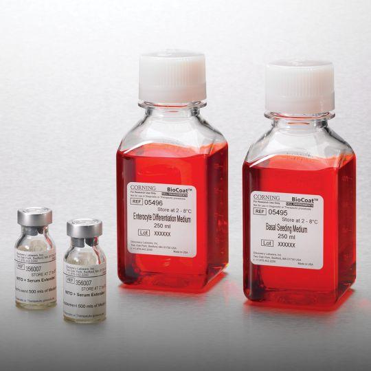 培养基、血清和试剂