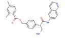 2,4-二甲基苯甲酸 [4-[(1S)-1-(氨基甲基)-2-(6-异喹啉基氨基)-2-氧代乙基]苯基]甲基酯