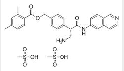 2,4-二甲基苯甲酸 [4-[(1S)-1-(氨基甲基)-2-(6-异喹啉基氨基)-2-氧代乙基]苯基]甲基酯二甲磺酸盐