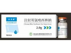 注射用氯唑西林钠(1.0g, 1.5g, 2.0g) )