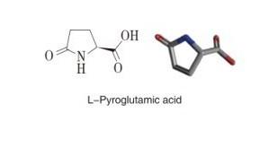 L-焦谷氨酸