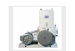 滑阀式真空泵(H-150)