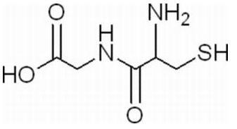 半胱氨酰甘氨酸