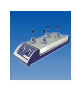 10通道型磁力搅拌器(加热&不加热)
