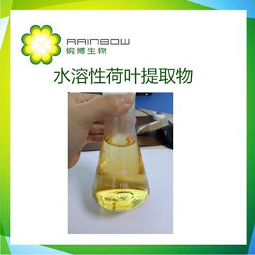 西安锐博生物--荷叶提取物 荷叶碱 荷叶黄酮 水溶性