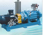 2SK系列双级水环式真空泵