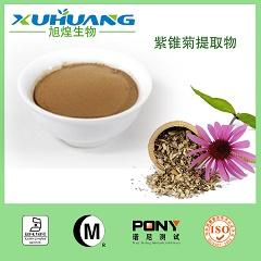紫锥菊提取物-多酚4%