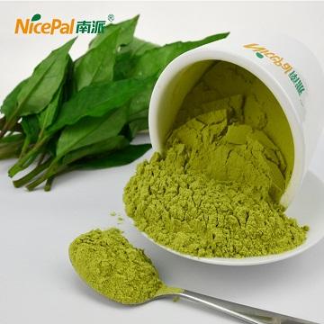 厂家批发纯天然喷雾干燥高钙菜粉 海南高钙菜原粉 保健品原料 植物钙