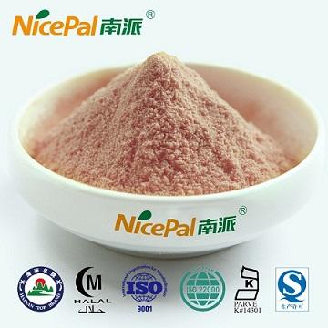 速溶西瓜粉 固体饮料 果汁粉 天然水果粉 美容代餐粉原料
