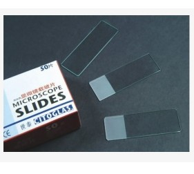 Microscope Slides 4