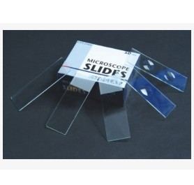 Microscope Slides 3