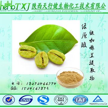 绿咖啡豆提取物 总绿原酸50