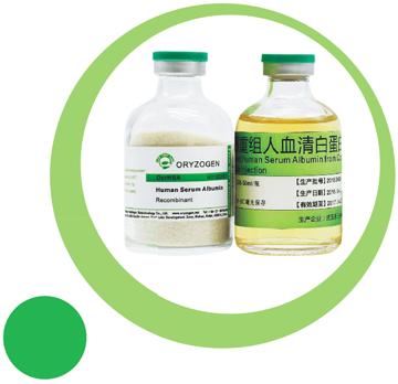 植物源重组人血清白蛋白(临床级别)