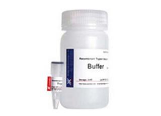重组胰蛋白酶细胞消化液;Trypsin solution