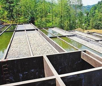 污水治理项目