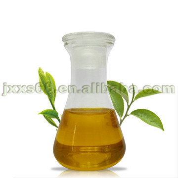 Factory provide pure natural tea tree oil
