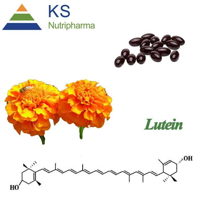 厂家直销 现货 抗氧化100%纯天然 万寿菊提取物