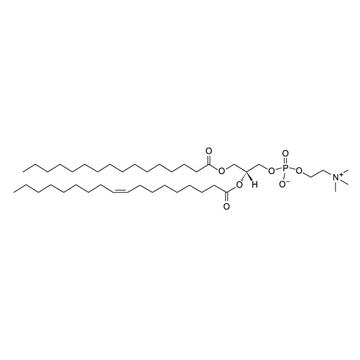 1-棕榈酰基-2-油酰基卵磷脂 POPC