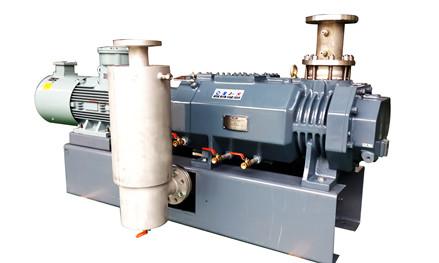RMV干式变螺距螺杆真空泵