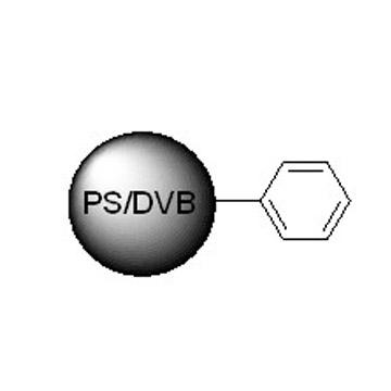 PS/DVB基质毛细管液相色谱柱