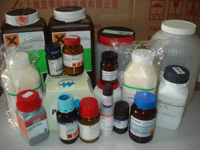 乳酸脱氢酶(牛心)