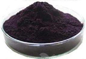 越橘提取物 25% Bilberry Extract Powder