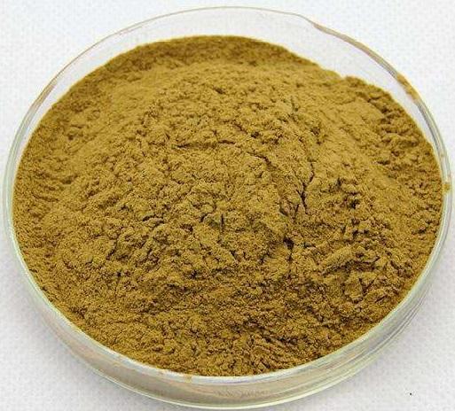 酸枣仁提取物uv Jujube Seed  Extract Powder