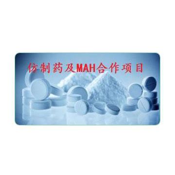 仿制药及MAH合作项目