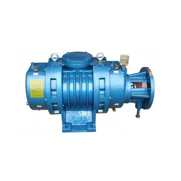 ZJ型罗茨真空泵