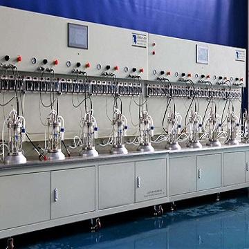 十联体玻璃发酵罐