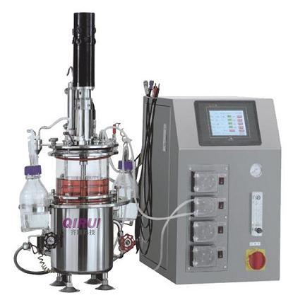 机械搅拌玻璃发酵罐