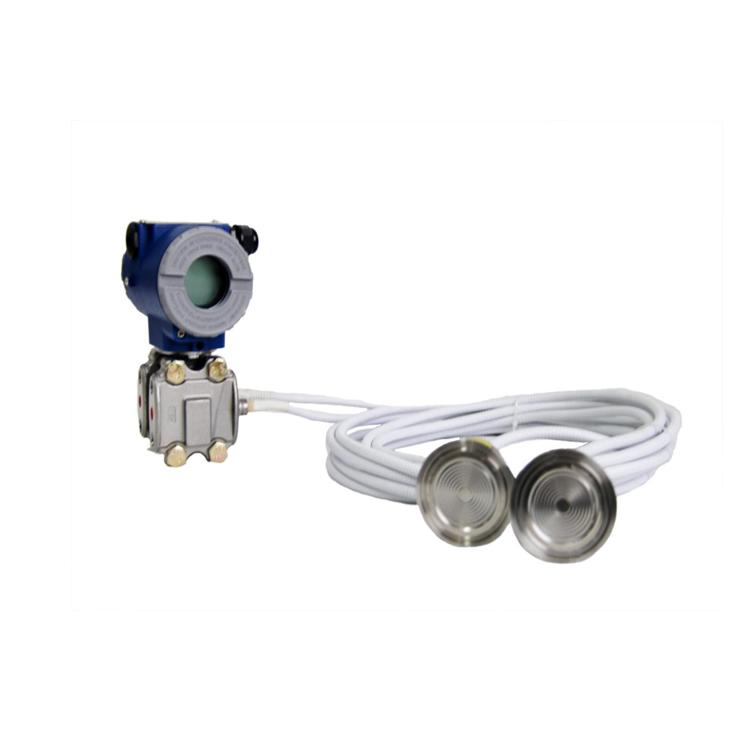 DPI10SW双远传差压变送器