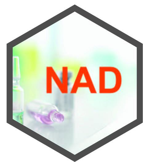 NAD— 烟酰胺腺嘌呤二核苷酸