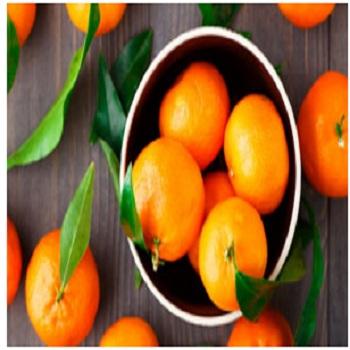 Hesperetin  橙皮素