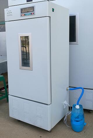 LHP霉菌培养箱