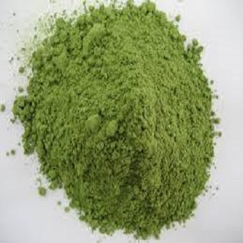 菠菜提取物 20:1 Spinach Extract Powder