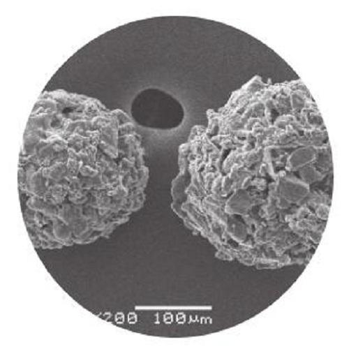 微晶纤维素乳糖复合物