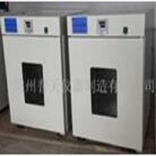 電熱恒溫干燥箱 DHG-9202