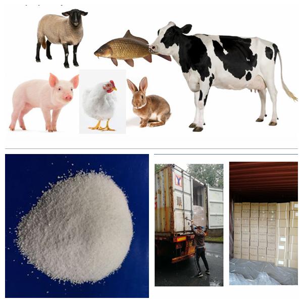 厂家直销 饲料级 维生素C 磷酸酯 35%