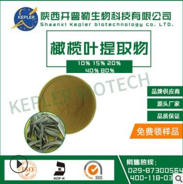 SC工厂保健食品备案生产商橄榄叶提取物15%  工厂批发 橄榄叶提取物