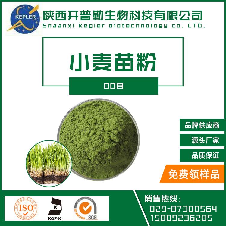SC工厂保健食品备案生产商小麦苗粉 工厂批发 小麦苗粉