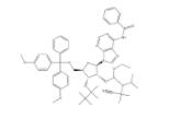 3'-TBDMS-Bz-rA Phosphoramidite