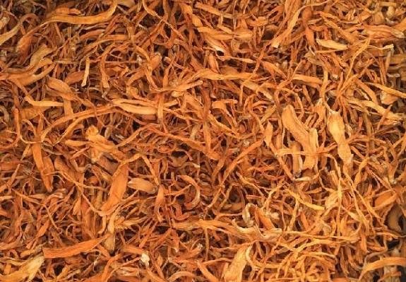 蛹虫草提取物 腺苷 多糖