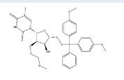 5'-O-[双(4-甲氧基苯基)苯基甲基]-2'-O-(2-甲氧基乙基)-5-甲基尿苷