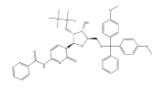 N-苯甲酰-5'-O-[二(4-甲氧基苯基)苯甲基]-2'-O-[(1,1-二甲基乙基)二甲基硅]-胞苷