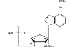 Dibutyryl cyclic AMP sodium salt