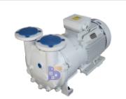 2BV5131水環真空泵