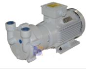 2BV2060水環真空泵
